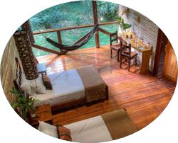 Nice room amazon jungle tour package