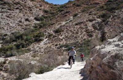 Bikers on road