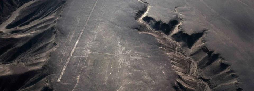 hummingbird and mysterious lines in Nazca